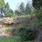 同左より外土塁西外の崖、城塁