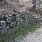 同左城塁の裾に石垣の残りか?