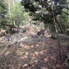 虎口手前の巨石