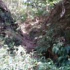 いきなりの竪堀