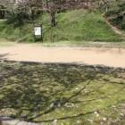 本丸一の門跡、礎石が残る