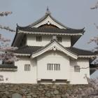 木造復元稲荷櫓、東面桜と共に