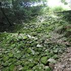 七つ井戸から見上げた高石垣