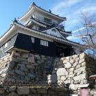 模擬浜松城天守閣、複合式付櫓台あり