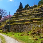 山頂の本丸北側を守る六段の石垣