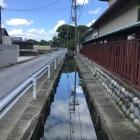 成願寺東側の水路(堀ではないと思いますが)