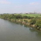 渡良瀬川(河川敷と堤防が城の中核部)